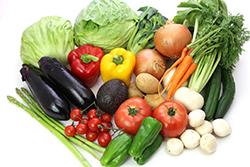 農作物(野菜・果物)のプレハブ冷蔵庫
