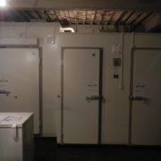 横浜市磯子区の南部市場 プレハブ冷凍・冷蔵庫の新設工事