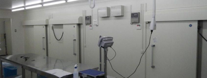 焼肉店セントラルキッチンのプレハブ冷凍冷蔵庫の新設工事